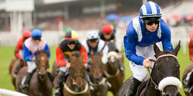 Horse Racing Kilkenny : Stay at Blanchville House
