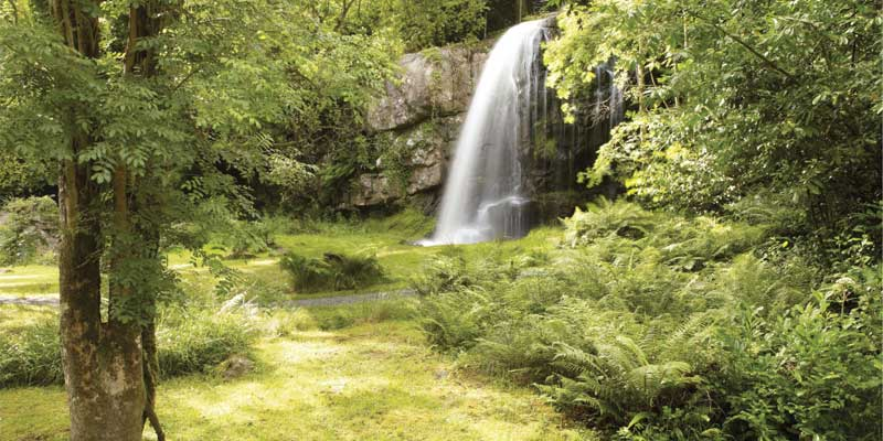 Kilfane Glen & Waterfall : © kilfane.com